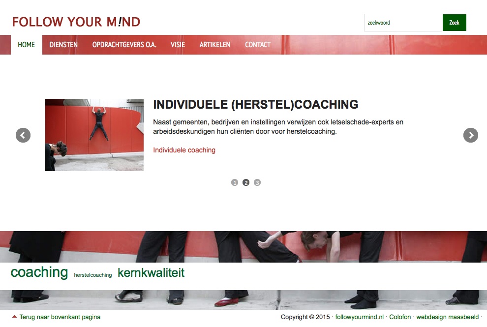 website management-, individuele coach