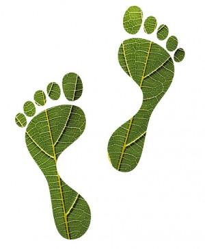 Duurzaam-Green-half