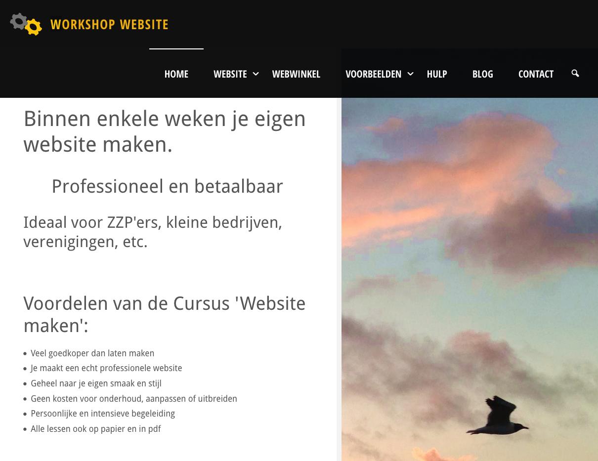 website voor cursus: maak je eigen website