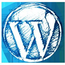 Hulp bij je WordPress website