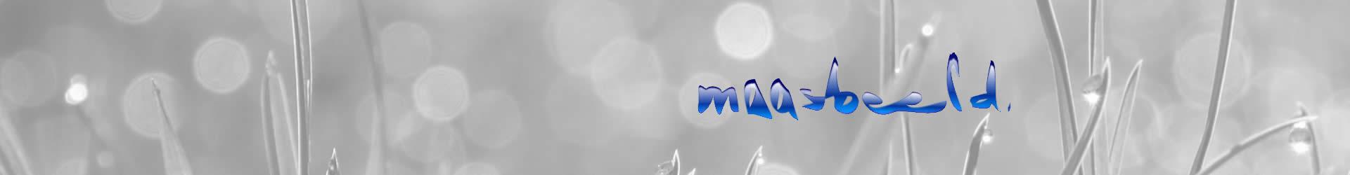 Maasbeeld webdesign